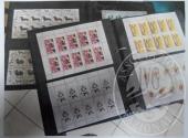 Francobolli da collezione: Repubblica democratica tedesca (lotto 116) due raccoglitori con 2.909 francobolli nuovi in foglietti