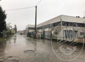 Lotto 1: piena proprieta' fabbricato in parte produttivo e abitativo in Fidenza
